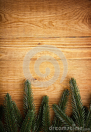 Fir tree on wood