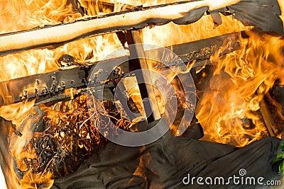 Fire burning wood