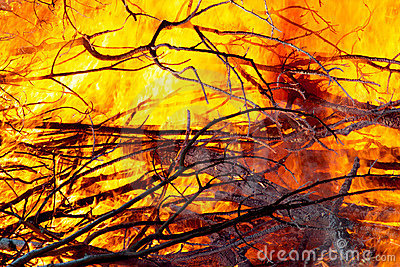 Fire closeups