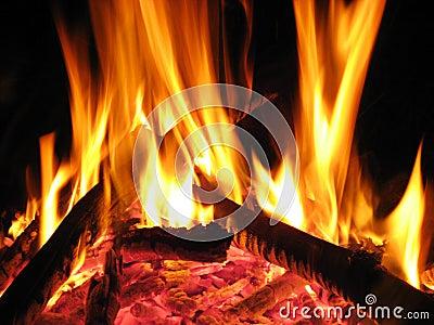 Fire flame ember burn