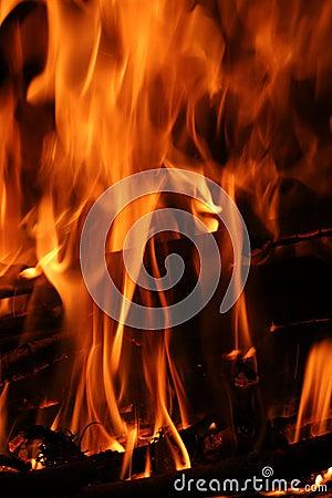 Fire Flames vertical