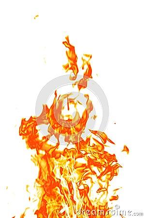 Free Fire On White Stock Photos - 6591513