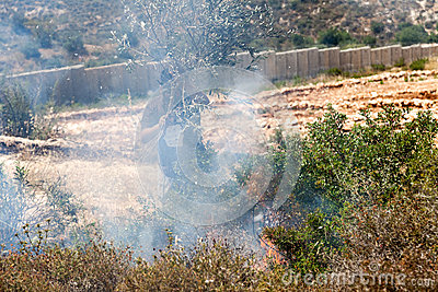 Fire in a Palestinian Field by Wall of Separation Editorial Stock Image