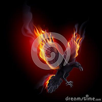 Free Fire Raven Stock Photos - 51173593