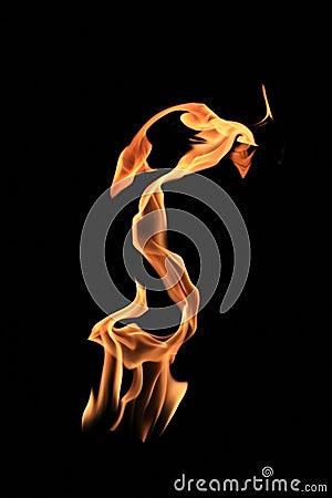 Fire snake
