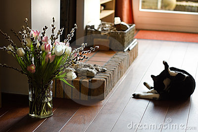 Fireplace with cat and springflowers