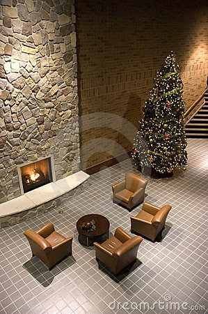Fireplace, Christmas Tree, Reception Waiting Room