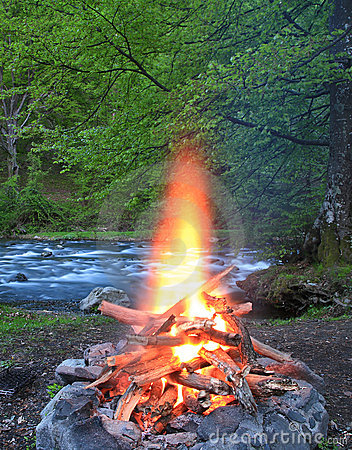 Free Fireplace In The Forest Royalty Free Stock Photo - 22964645