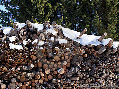 Firewood Stock Photo - Image: 13483280