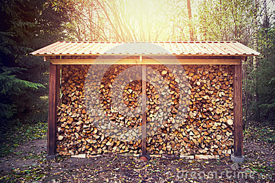 Firewood stacked in shed