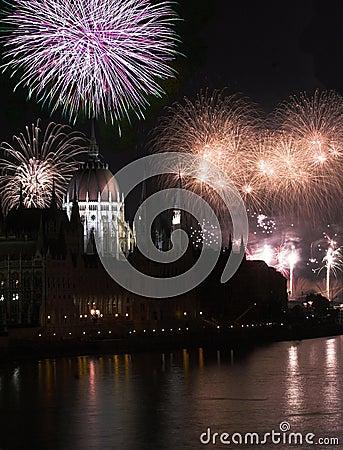 Free Firework ,2011 Stock Photos - 14006923