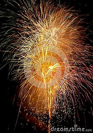 Free Firework Stock Image - 362451