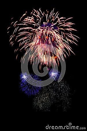 Free Firework Stock Photography - 5594782