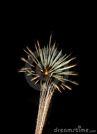 Firework with Star Trail