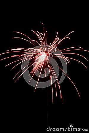 Free Fireworks Royalty Free Stock Photos - 1010378