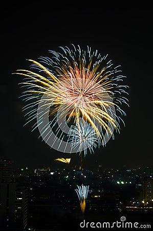 Free Fireworks Royalty Free Stock Photos - 21086968