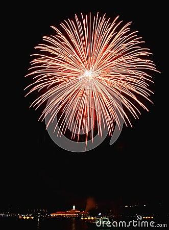 Free Fireworks Royalty Free Stock Photo - 3874145