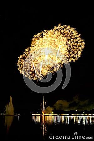 Free Fireworks Royalty Free Stock Image - 48092386