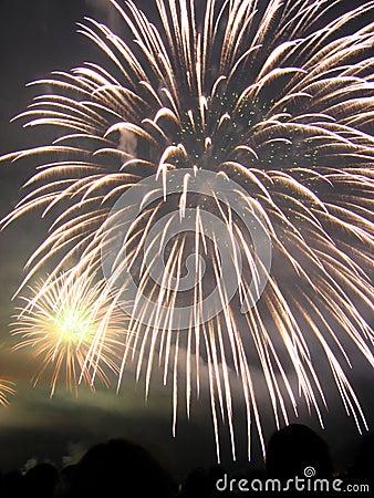 Free Fireworks Display Royalty Free Stock Photo - 280635