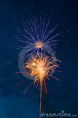 Free Fireworks - Flower Stock Photos - 5156013