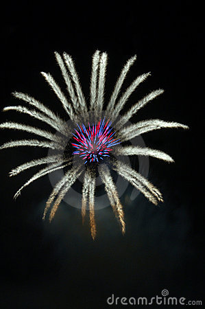 Fireworks lighting in floral pattern at night