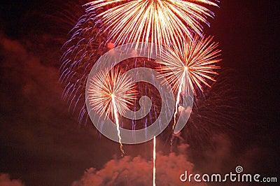 Fireworks lighting up the sky