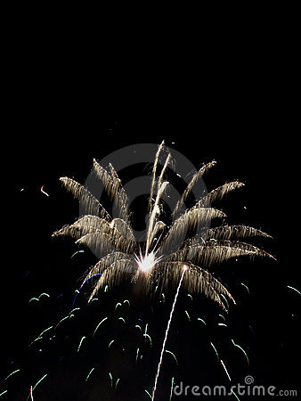 Fireworks Show VIII