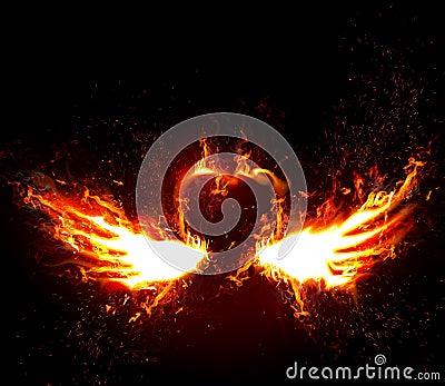 Firey Love
