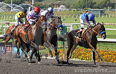 First Dude Wins The Hollywood Gold Cup Editorial Image