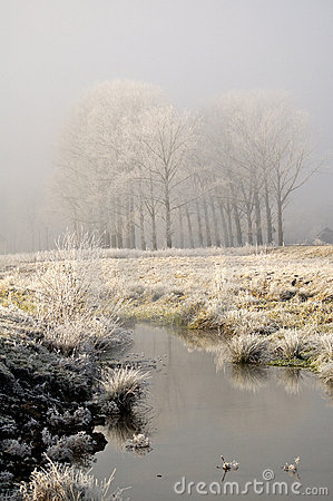 First Frost - Landscape