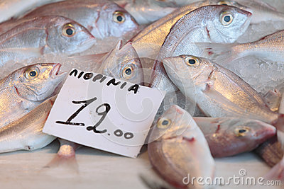 Fish at Aegina market