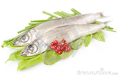 Fish Argentina