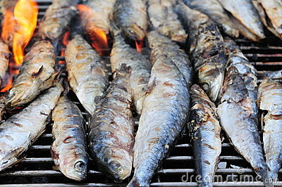 Dead Fish Grill on Royalty Free Stock Photos  Fish Barbecue  Image  21354088