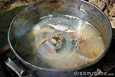 Fish borsch at cauldron