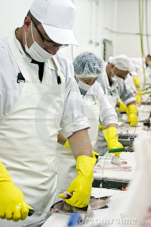 Fish cleaning assembly line