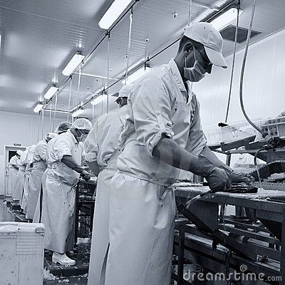 Free Fish Cutters At Work Royalty Free Stock Image - 6773236