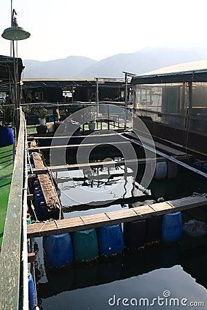 Free Fish Farm On The Sea Royalty Free Stock Photos - 16274198