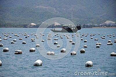 Fish farms & boat