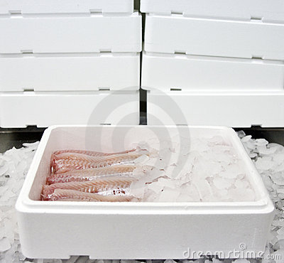Fish food in box