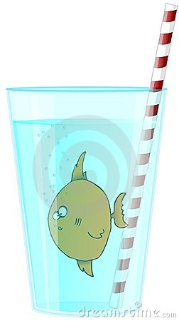 Fish In A Glass