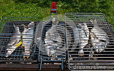 Fish on a grill