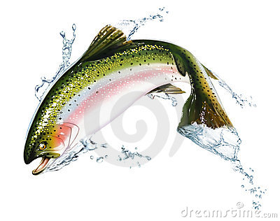 Fish jumping out of the water, with some splashes.