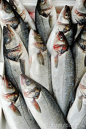 Fish At Market Stock Image - Image: 13192441