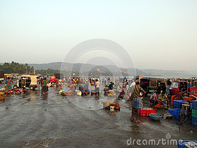 Fish Market in India Editorial Photo