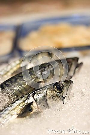 Fish market in stockholm