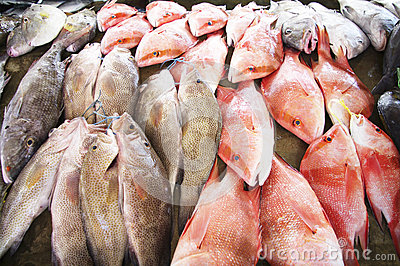 At the fish market in Victoria, Seychelles