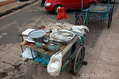 Fish Pushcart