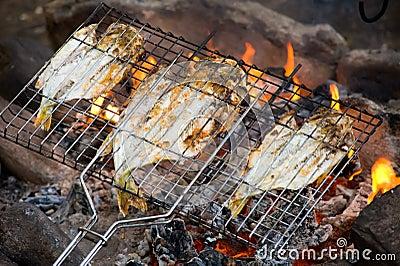 Fish roasting on fire