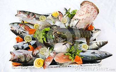 Fish and seafood