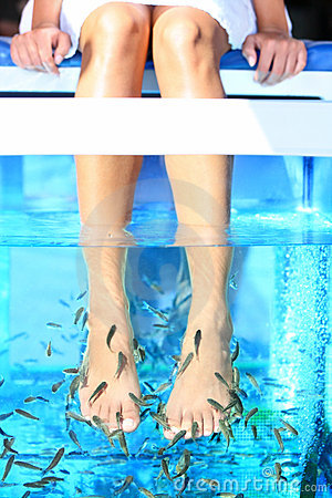 Free Fish Spa Pedicure Royalty Free Stock Image - 23808366